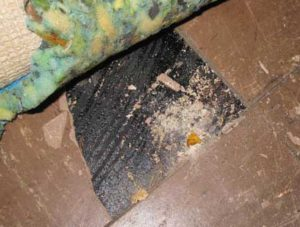 Asbestos Mastics And Sealants