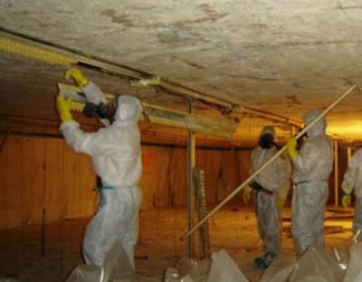 Asbestos Abatement Canadian Haz Mat Environmental