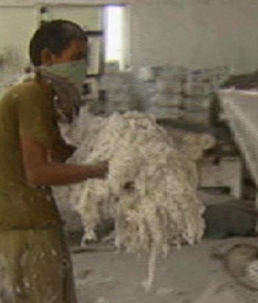 Asbestos Fibers Canadian Haz Mat Environmental