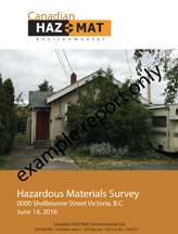 example hazmat report